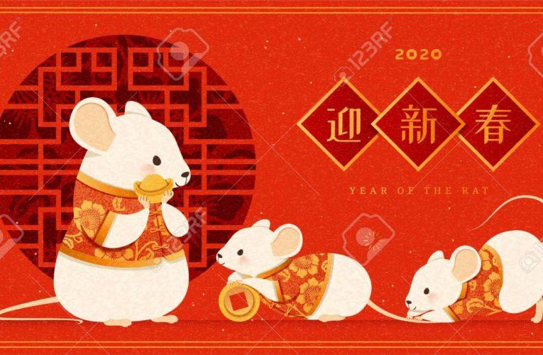 Китайската лунна Нова година
