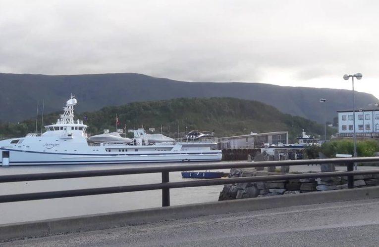 Община Видин намери партньор от Норвегия за уличното осветление