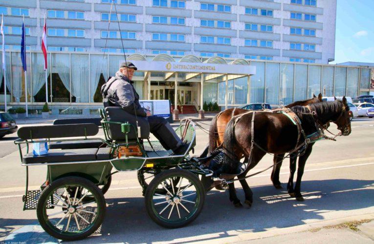 С файтони разнасят безплатна храна във Виена