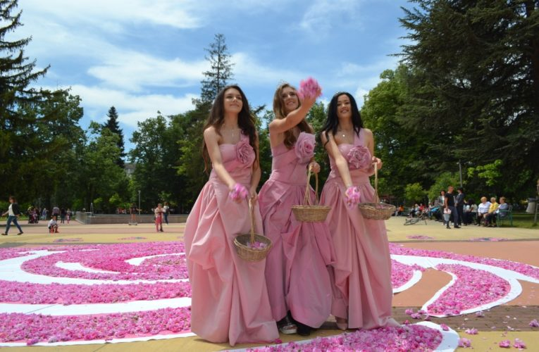 72,000 roses in one for the holiday of Kazanlak