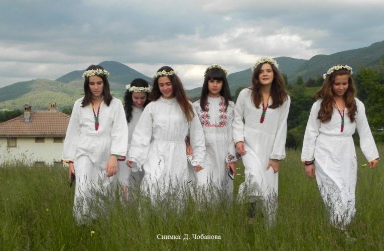 Festival de flores silvestres en el Rhodopes