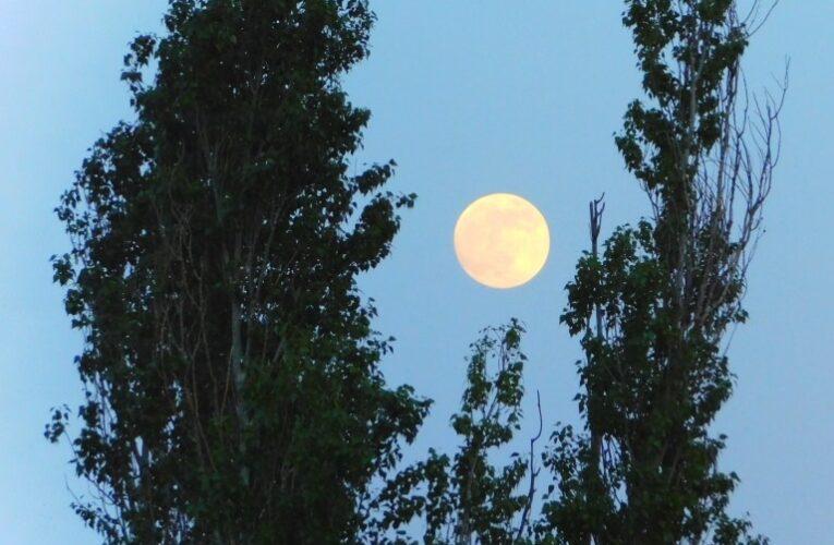 Пълна луна  и пълно лунно затъмнение днес