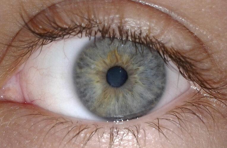 Безплатни очни прегледи във Видин