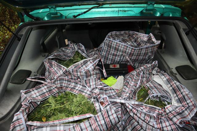 Поредна наркооперация на полицията във Видинско